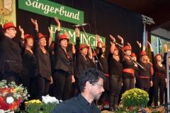 2017-10-29-Helmlingen-(10)